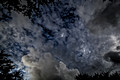 Totality Wide 485_DxO